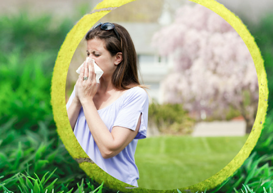 Lady with Hayfever