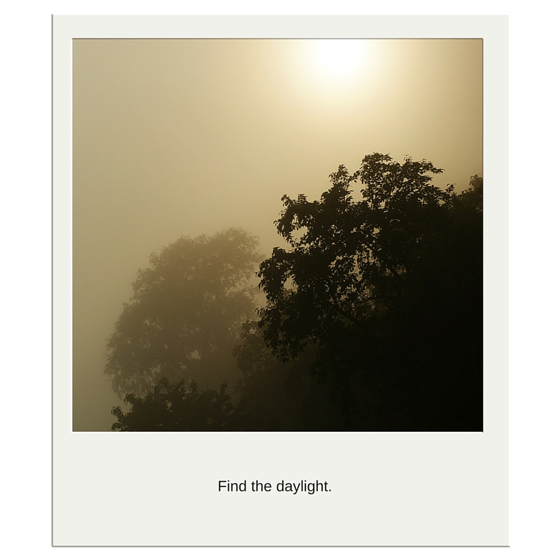 Foggy Daylight Pic