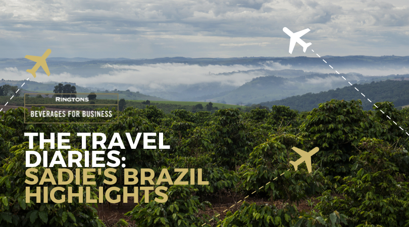 Travel Diaries: Sadie's Brazil Highlights