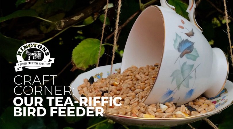 Craft corner: Tea-riffic Bird Feeder