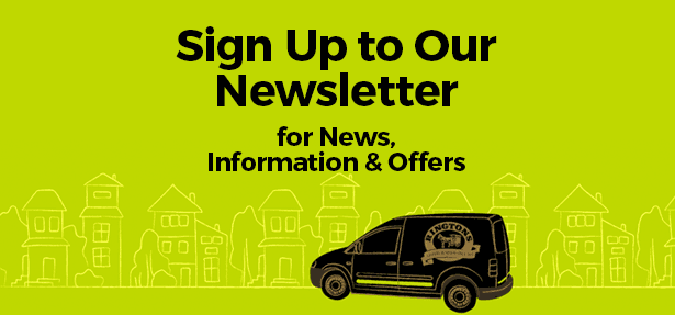 Newsletter Incentive